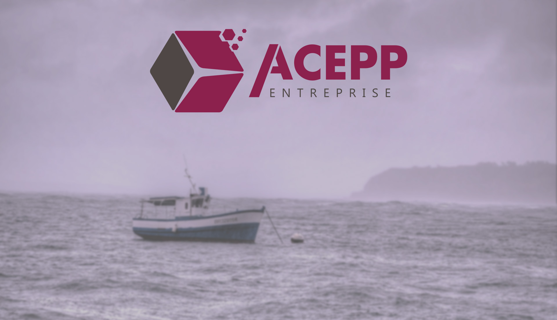 Acepp Entreprise